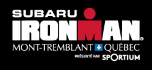 IMMtT_Logo